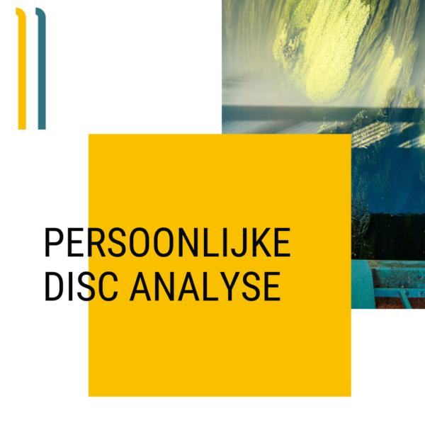 Persoonlijke Analyse DISC